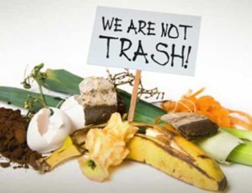 Composting in Denver – Updated for 2020 | Affordable Roll-Offs