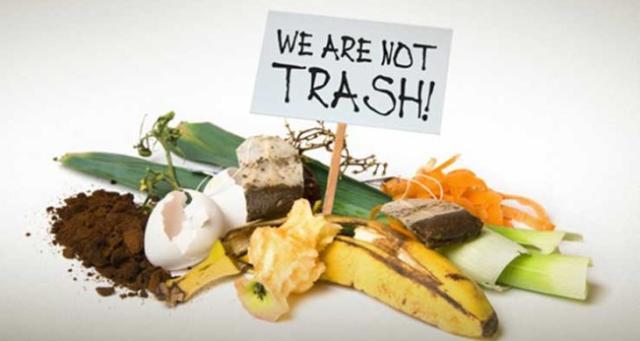 Composting Dumpster Denver