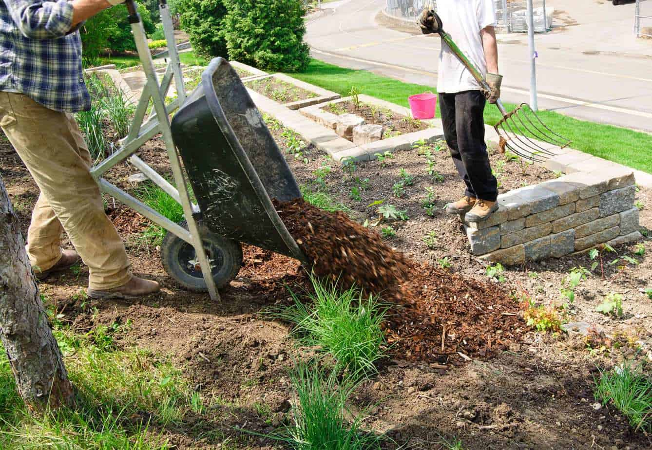 Landscaping - Affordable Roll-Offs