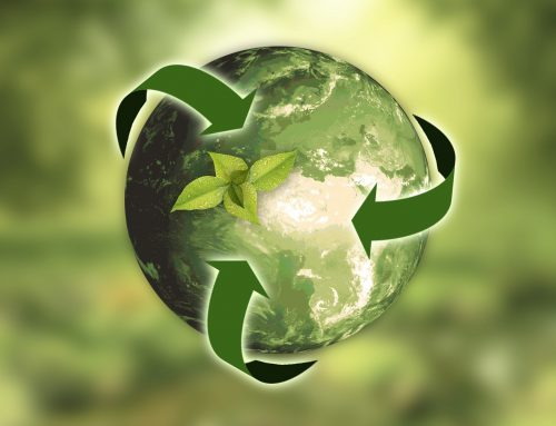The Scoop on Recycling